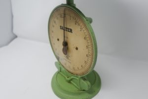 Salter Scale